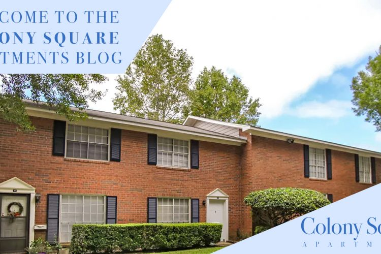 Welcome to the Colony Square Apartments Blog