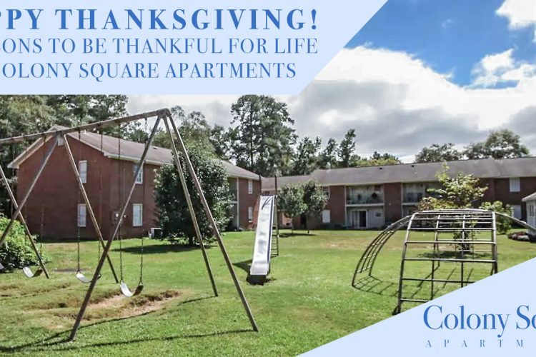 Happy Thanksgiving! 7 Reasons to be Thankful for Life at Colony Square Apartments