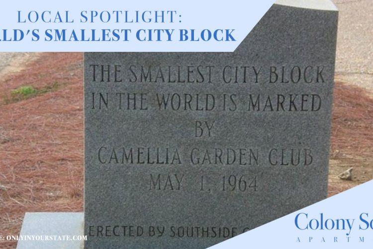 Local Spotlight: World's Smallest City Block