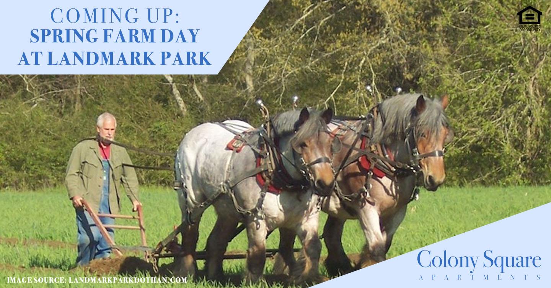 Coming Up: Spring Farm Day at Landmark Park