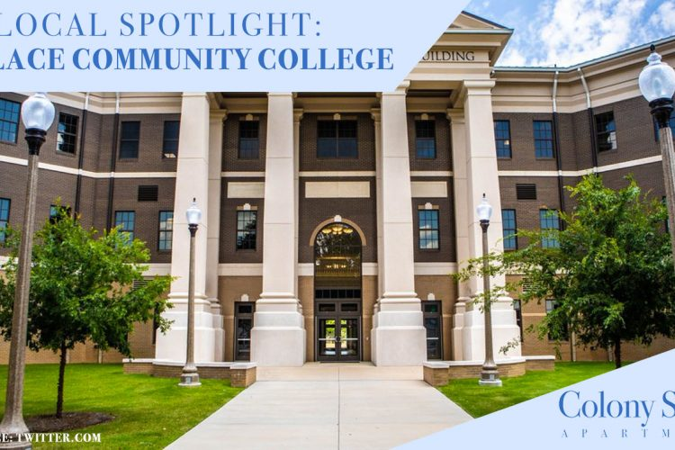 Local Spotlight: Wallace Community College