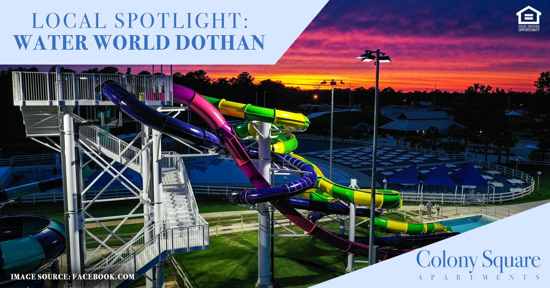 Local Spotlight: Water World Dothan
